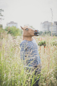 horse mask absurd man in the grass