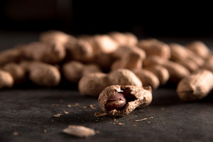 Image of a lot of dried peanut put by a row on dark background