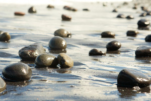 Image of black oval stones on wet sandy shore