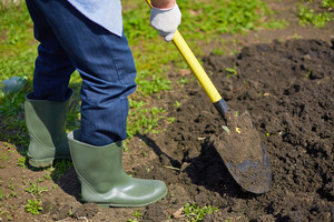 Image of male farmer digging in the garden
