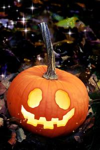 Jack O Lanterns on Autumn Leaves