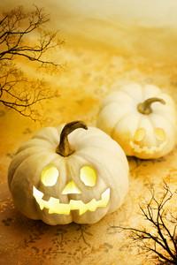 Jack O Lanterns with Autumn Trees