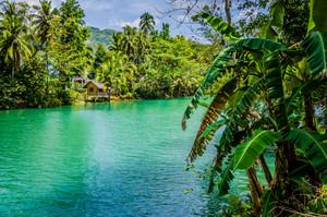 Jungle green river Loboc at Bohol island of Philippines. Bamboo hut under palm trees, Bohol, Philippines
