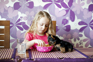 Little girl and her puppy are eating snack together in the kitchen