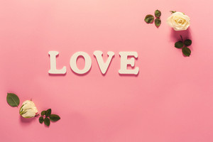 Love theme with white rose frame on a pink background