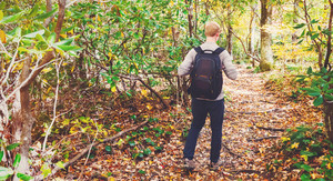 Man walking on a forest path in autumn