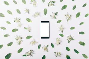 Mobile phone with blank screen among green leaves on a white background