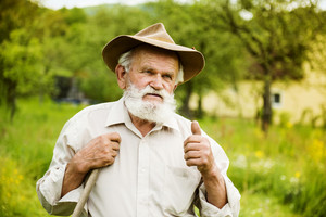 Old farmer with beard working with rake in garden