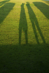 Photography shooting silhouettes over grass
