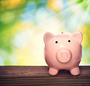 Pink piggy bank over shiny leaves background