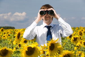 Portrait of businessman looking through binoculars in sunflower field