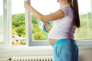 Portrait of unrecognizable pregnant woman cleaning windows