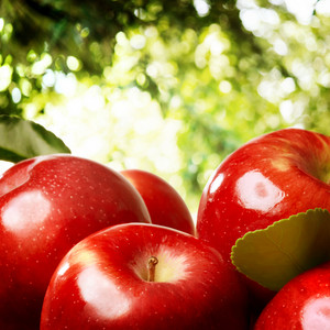 Red apples outside with a  foliage backdrop