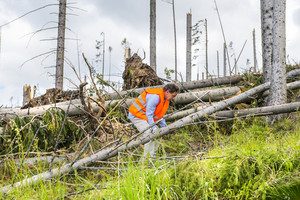 Rescue worker at destroyed forest as an effect of strong storm in High Tatras, Slovakia