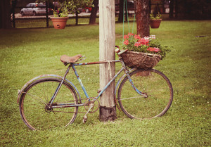 Retro styled image of an old broken rusty bicycle with flowers in basket