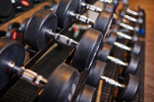 Row of barbells in gym