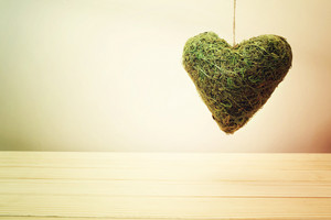 Rustic green moss heart hanging with copyspace for a greeting to your sweetheart