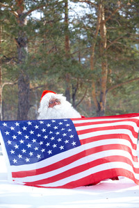 Santa Claus holding American flag in winter forest