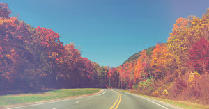 Scenic road in autumn woods with colorful foliage