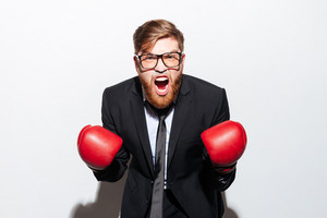 Screaming Business man in glasses and black suit in boxing gloves looking at camera. Isolated gray background