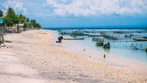 Seaweed plantation farm by Low Tide in Nusa Penida, Bali in Clouds on Background, Indonesia