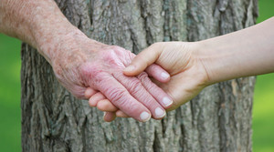 Senior and young woman holding hands over tree trunk
