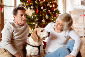 Senior couple sitting on the floor in front of illuminated Christmas tree inside their house with their dog.