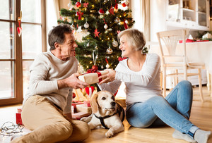 Senior couple with their dog sitting on the floor in front of illuminated Christmas tree inside their house giving presents to each other.