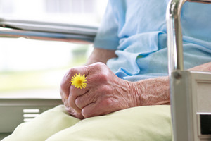 Senior Woman Sitting in a Wheelchair Holding a Flower