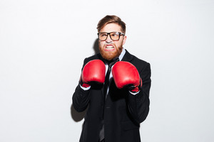 Serious bearded business man in glasses and black suit in boxing gloves smeared in cocaine as well as looking aside. Isolated gray background