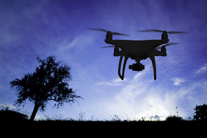 Silhouette of hovering drone taking pictures of meadow with trees at dusk.
