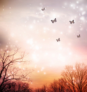 Small butterflies over the trees in the red sky background