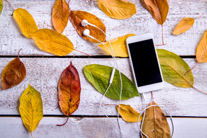 Smart phone, earphones and colorful autumn leaves. Studio shot on white wooden background.