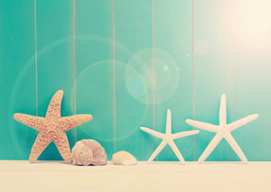 Starfish and sea shells on a teal colored wooden background