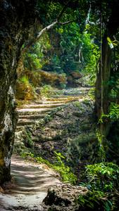Stone staircase leading on Tembeling pool, Nusa Penida Bali Indonesia