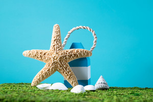 Summer ocean theme with starfish