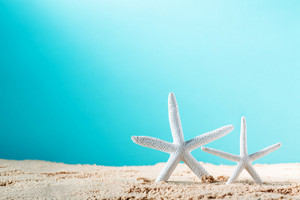Summer theme with starfish in the sand on a bright blue background