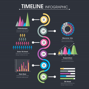 Timeline Infographic template layout with various statistical graphs and charts for Business concept.