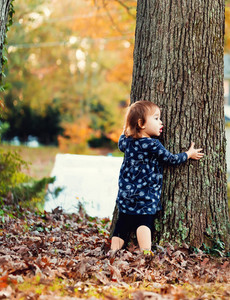 Toddler girl hugging an oak tree outside in autumn