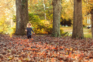 Toddler girl playing in the leaves in autumn