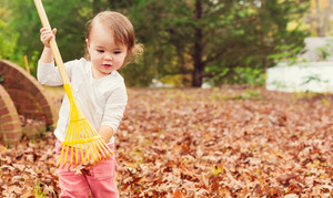 Toddler girl raking leaves in autumn