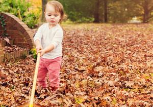 Toddler girl raking leaves in autumn
