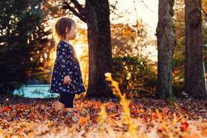 Toddler girl standing outside in the autumn leaves at sunset