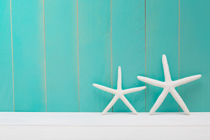 Two white starfish on a blue wooden background