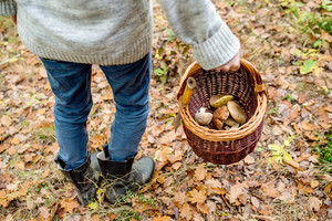 Unrecognizable man holding wicker basket with mushrooms in autumn forest