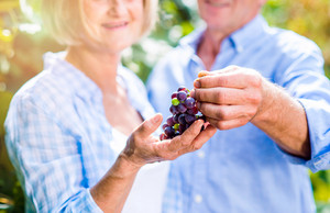 Unrecognizable senior couple in blue shirts holding bunch of grapes in their hands