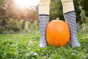 Unrecognizable woman in striped rubber boots with orange pumpkins. Sunny autumn nature.