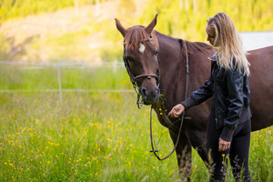 Woman feeding her arabian horse with snacks in the field