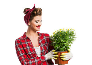 Woman in red checked shirt with pin-up make-up and hairstyle holding flower pot with yellow daisies. Studio shot on white background