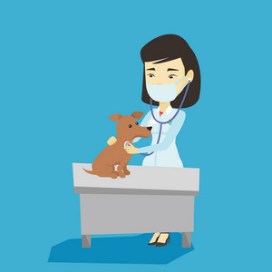Young asian veterinarian examining dog in hospital. Veterinarian doctor checking heartbeat of a dog with stethoscope. Medicine and pet care concept. Vector flat design illustration. Square layout.